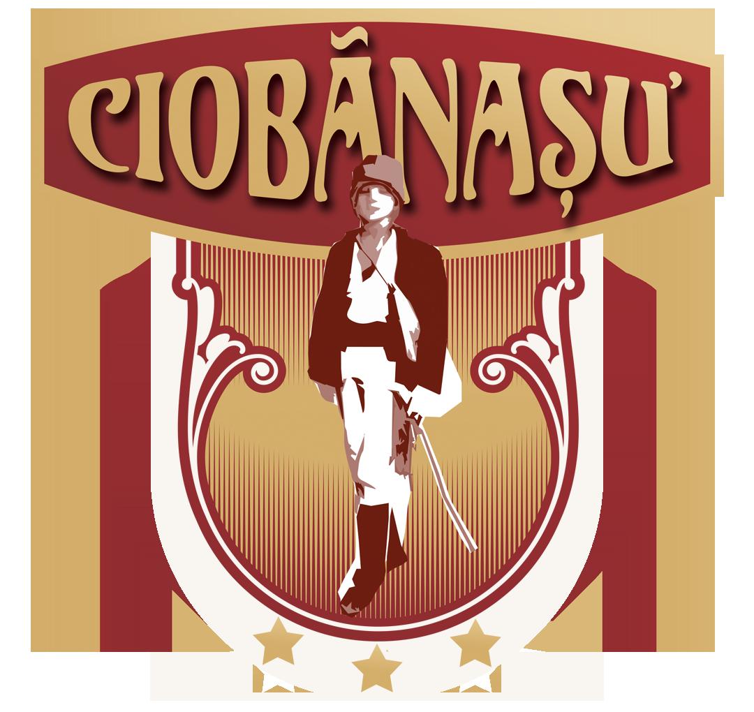 Complex Ciobanasu